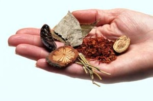Herbal Therapies for Diabetes