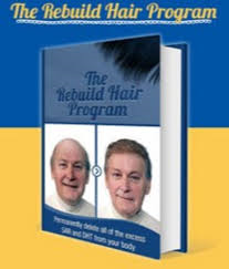 The Rebuild Hair System