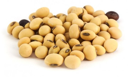 defeating diabetes - dry-soy-beans