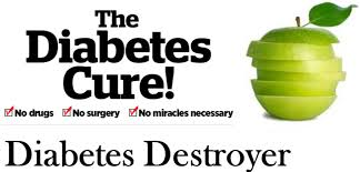 Diabetes 60 System Guide and Diabetes Destroyer Guide ebook
