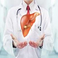 fatty liver remedy eBook